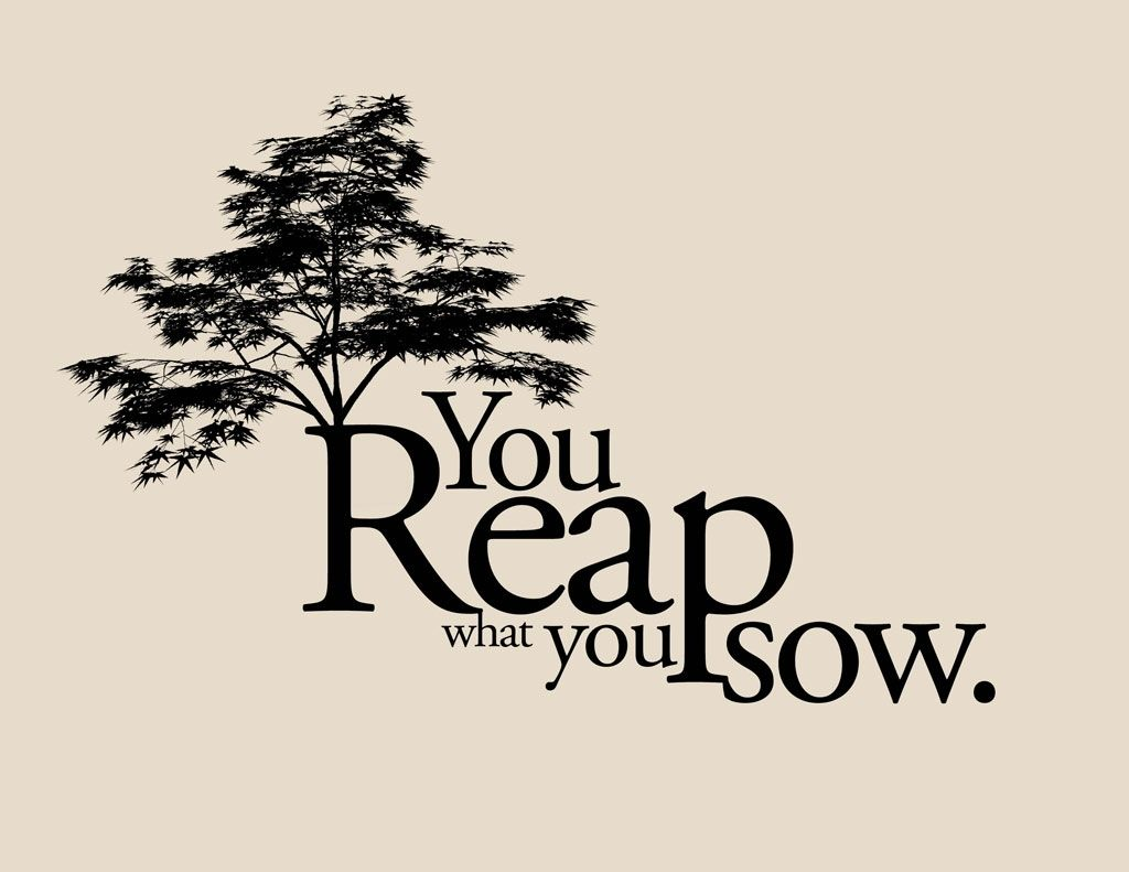 reap what u sow bible verse