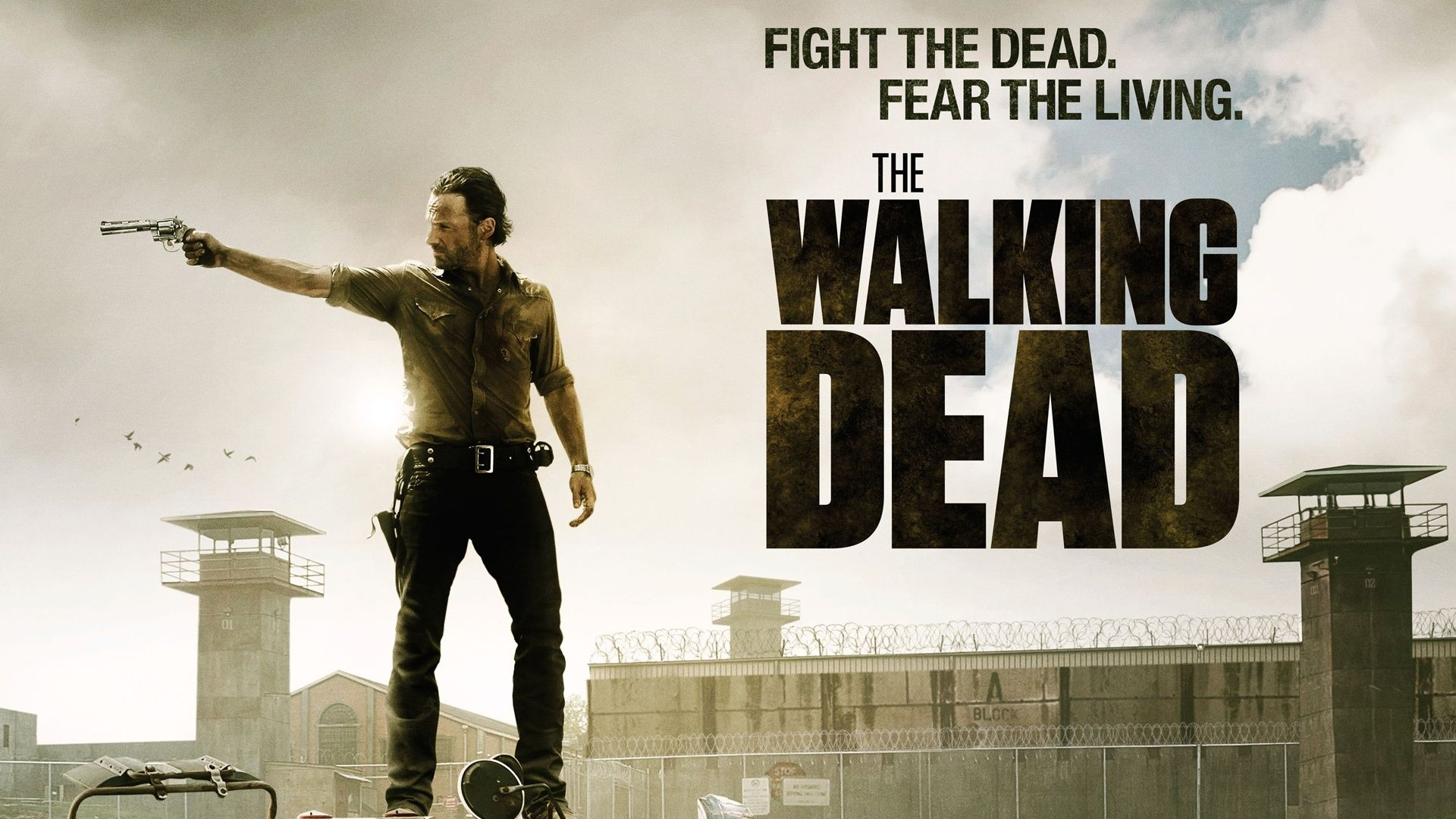 the walking dead hd wallpapers collection hd wallpapers 3d