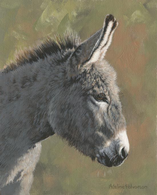 Donkey Limited Edition Prints on Paper and Canvas from artist Adeline Halvorson