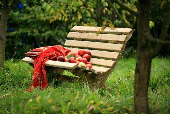 Fancy Holz Sitzbank Garten Obstbaum Ideen