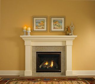 image result for ventless gas fireplace inserts fireplace
