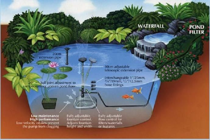 Midipond pond diagram fish pond technic pinterest for Koi pond system