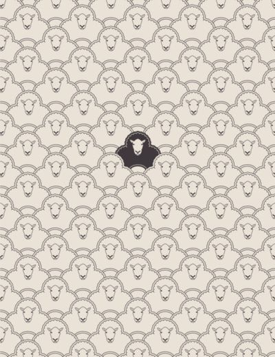 Dare To Be The Black Sheep Sheep Wallpaper Graphic Design