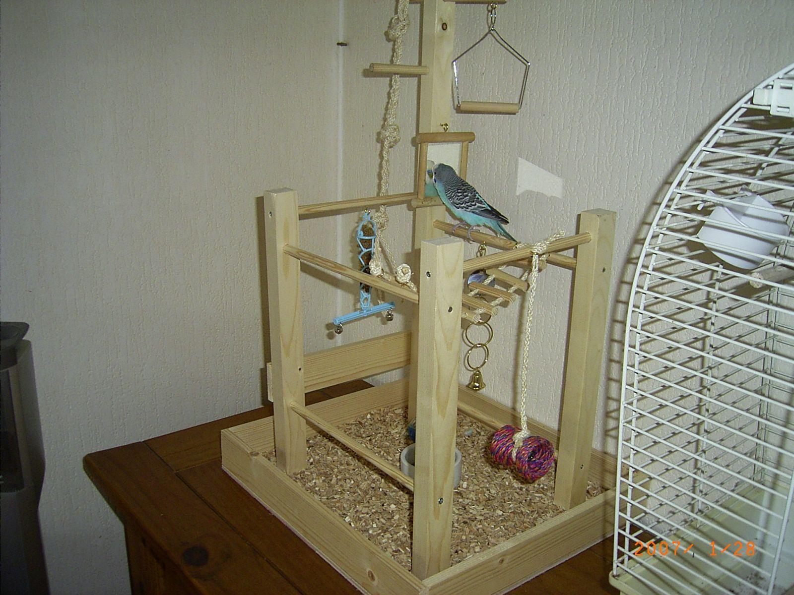 Een parkieten speeltuin of speelboom - Parkietenfun