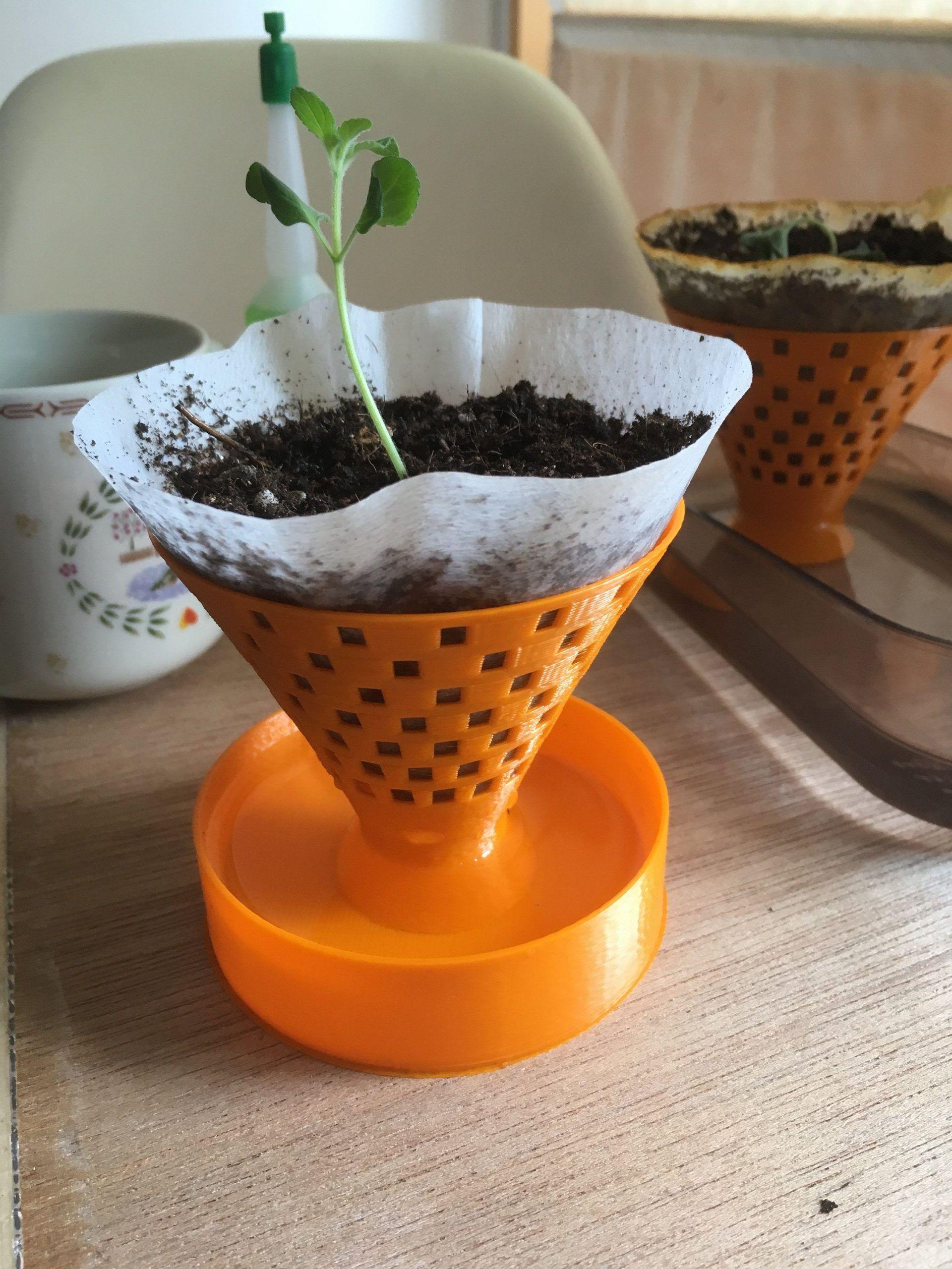 Self Watering Seedling Planter  coffee filter planter  biodegradable seedling  3D printedbiodegradable