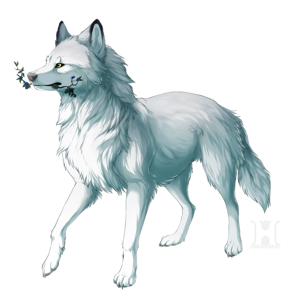 Amazing Wolf: Wolf And Blueberries By Hioshiru.deviantart.com On