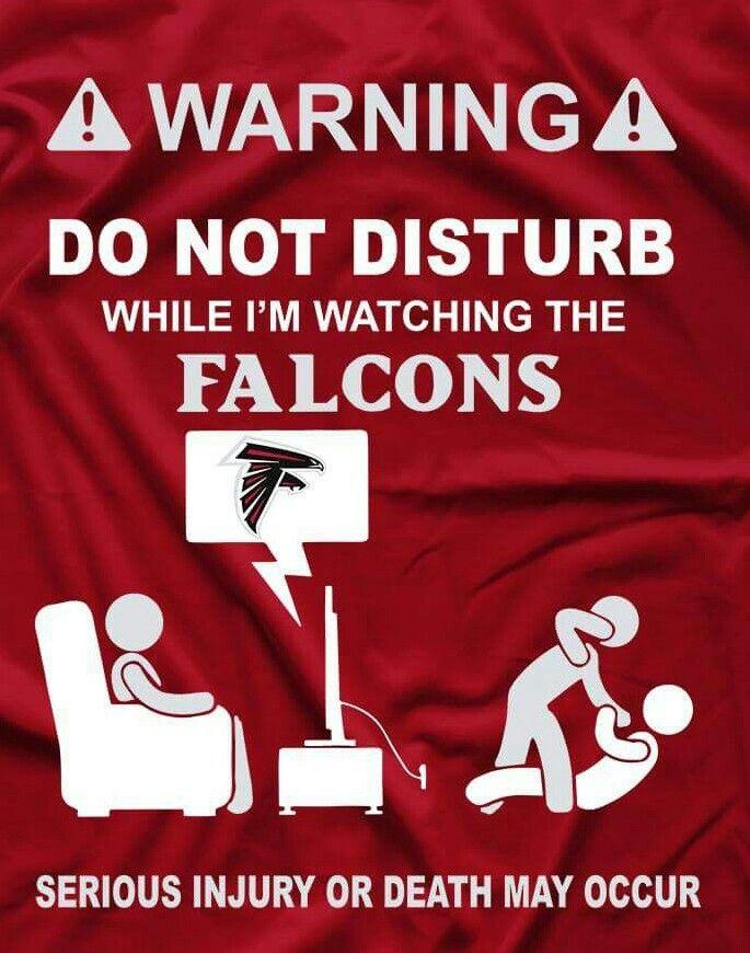 Pin By Samantha Hart On Things For Aunt Laura With Images Atlanta Falcons Football Falcons Atlanta Falcons