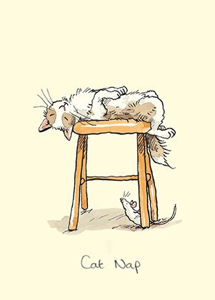 m269 cat nap by anita jeram creative illustration pinterest cat illustrations and drawings