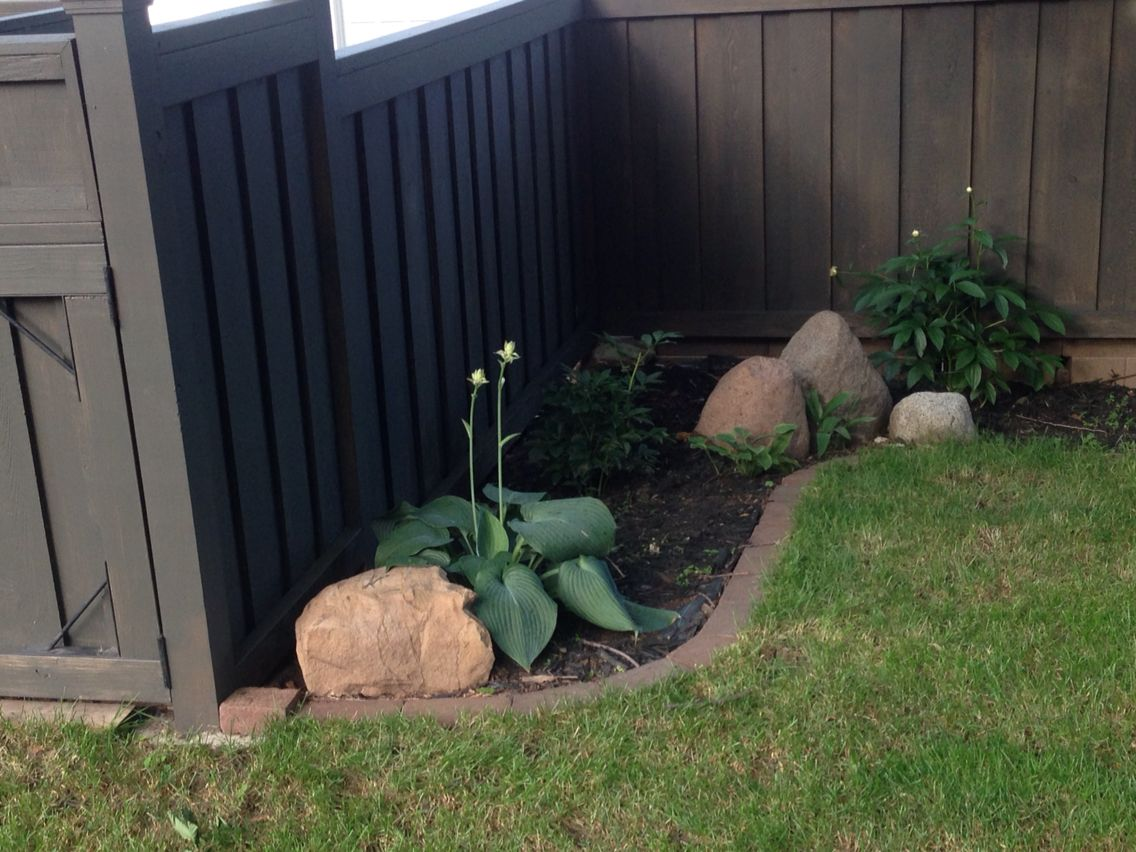 Benjamin Moore Dragons Breath Semi Solid Stain On Cedar Fence I