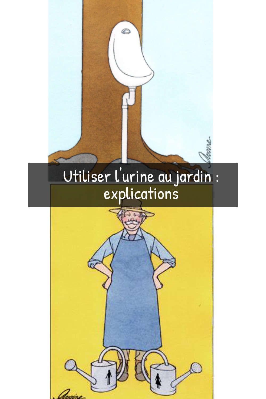 L'urine De L'or Liquide Au Jardin : l'urine, liquide, jardin, Utiliser, L'urine, Jardin, Explications, Spécialiste, Jardins,, Astuce, Jardin,, Jardinage
