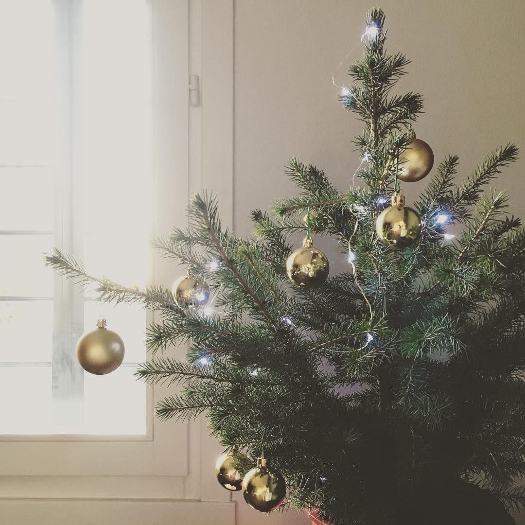 E per questo #Natale un ospite in più! Benvenuto #Pino ! #lamagiadelnatale #ilcalendariodelclub2015 #ilclubdelnataleasettembre #myhome #lifeathome #living #xmas #christmas #natalebello #cosebellebreak #xmas_detailsofus