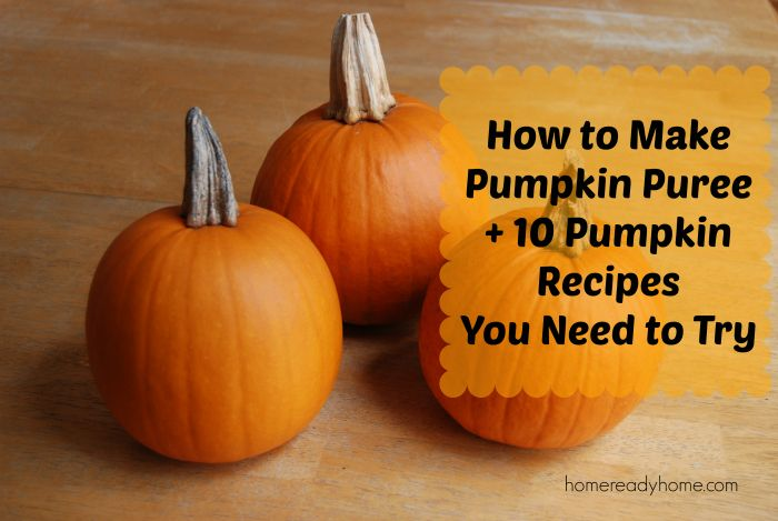 how to make pumpkin squash puree