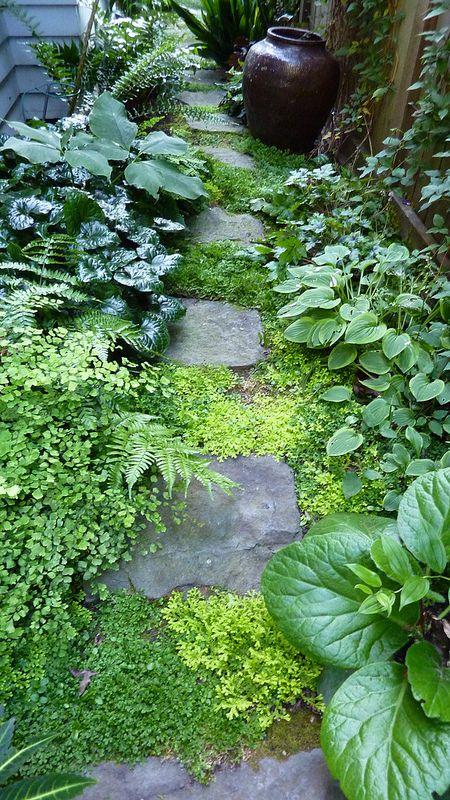 Portland Oregon Garden Tour #sideyards