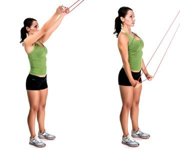 triceps pulldowns muscle targeted latissimus dorsi 10