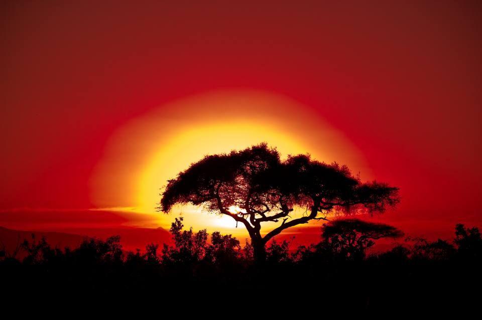 Africa Kenya Sonne Jpg 960 638 Sonnenuntergang Kostenlose Fotos