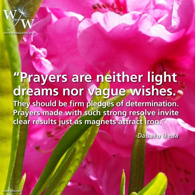 Words of Wisdom.. | Ikeda quotes, Prayers, Wisdom