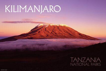 bucket list: climb Mount Kilmanjaro