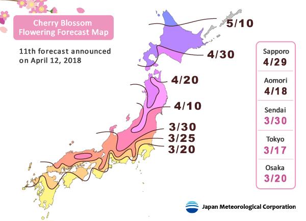 2021 Japan Cherry Blossom Forecast Jrailpass Japan Cherry Blossom Hanami