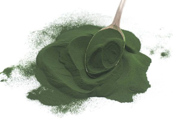 spirulina is naturally high in protein and iron to keep energy levels up and blood sugar