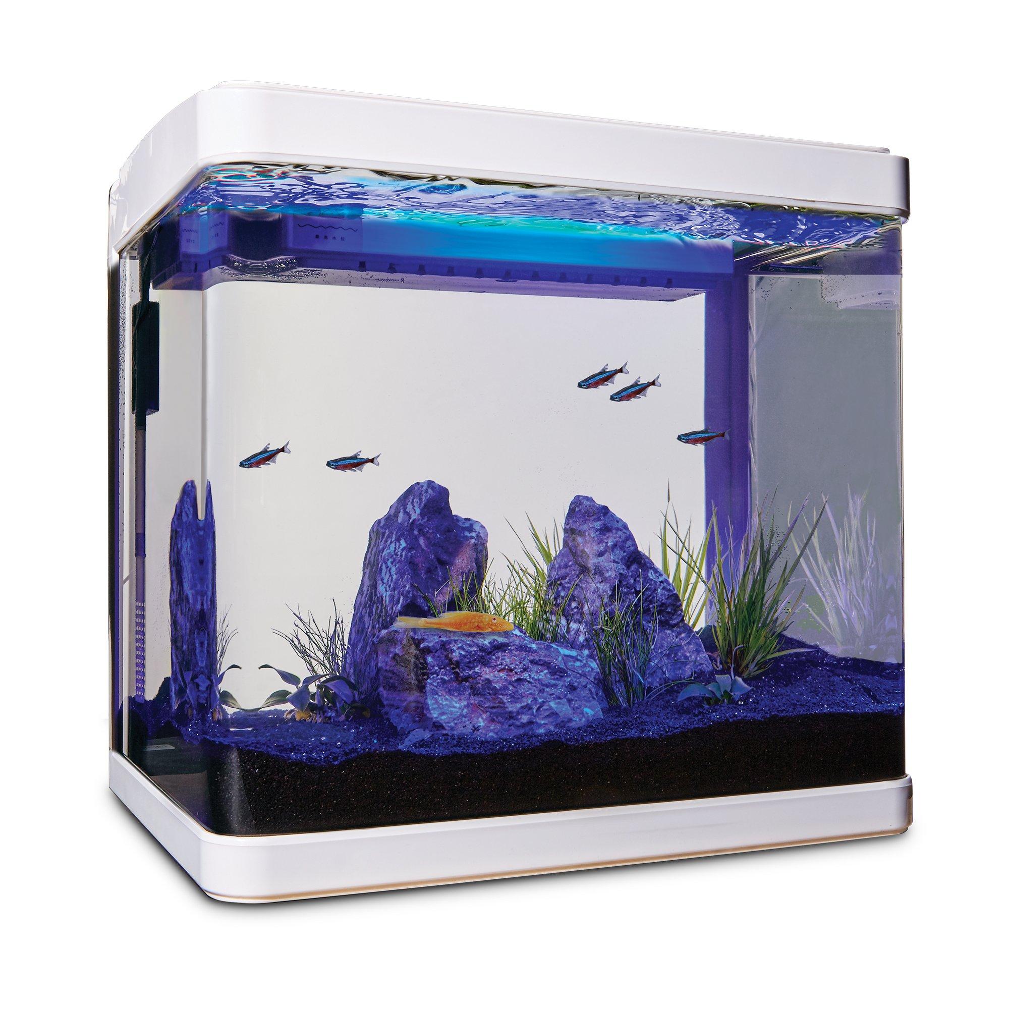 Penn Plax 5 Gallon Radius Curved Corner Glass Aquarium Kit In 2020 Aquarium Kit Aquarium Petco