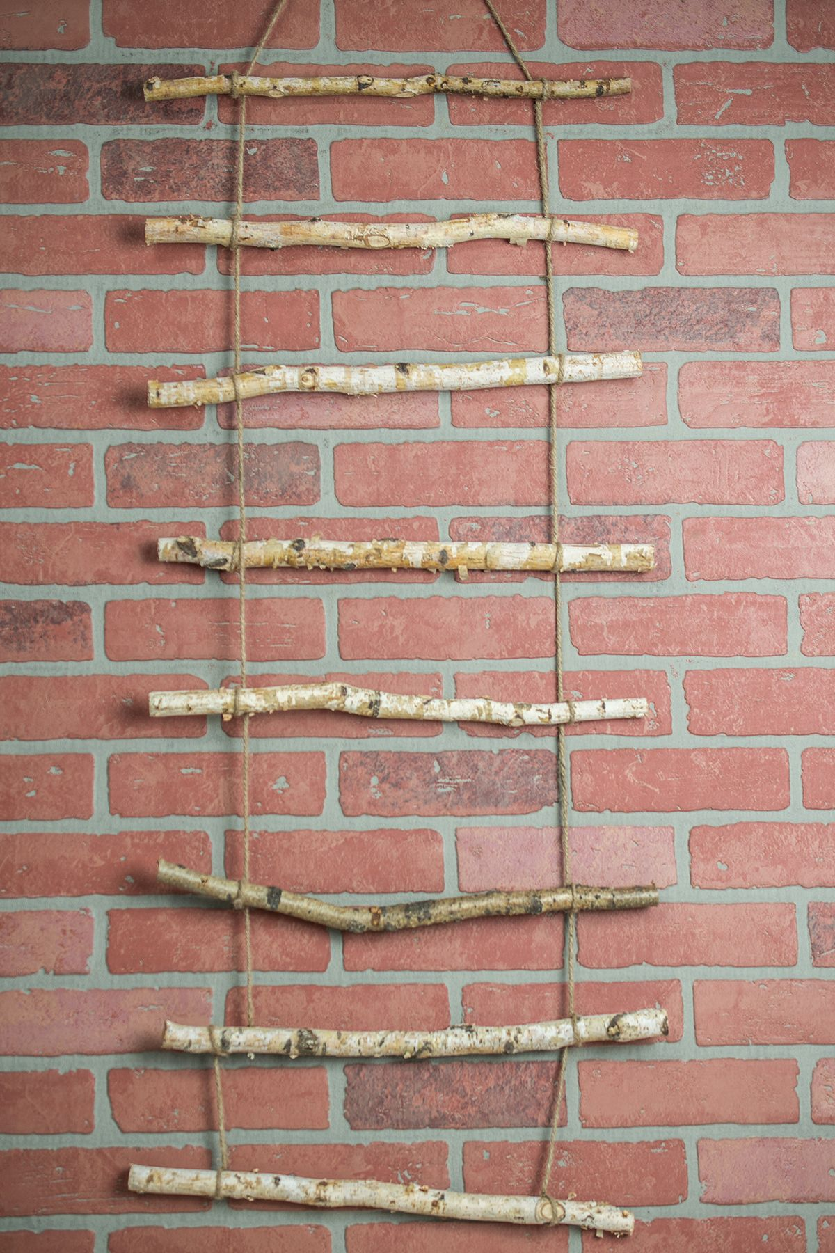 Wall decor apartment pinterest birch branches rope ladder and
