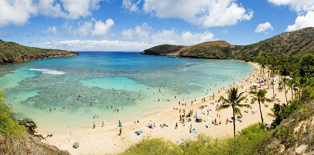 Oahu Activities | Oahu Hotels | Hotels on Oahu