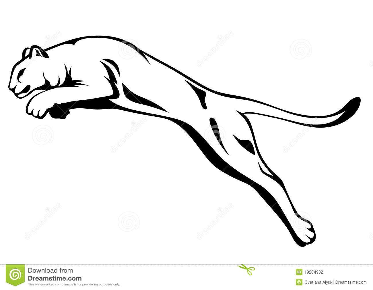 Mountain Lion Black And White Illustration
