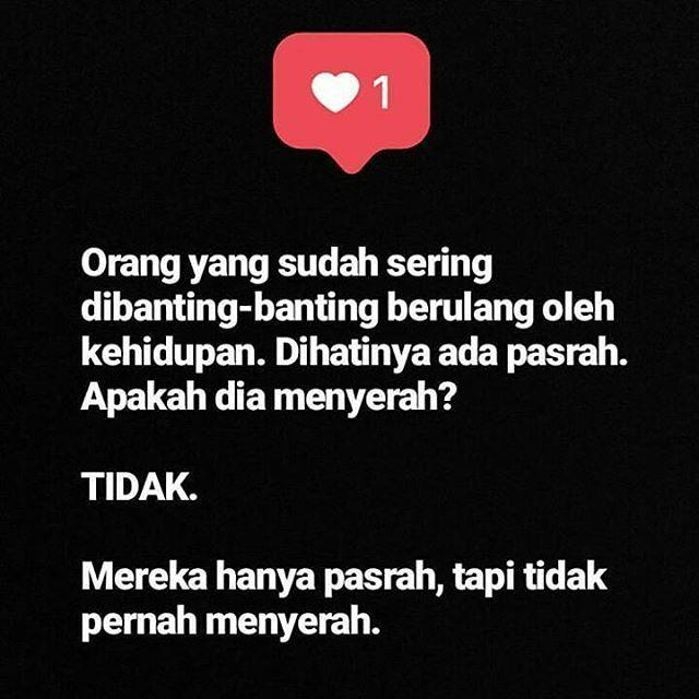 Dear Followers Yang Budiman Yang Sering Dibanting Banting Sama