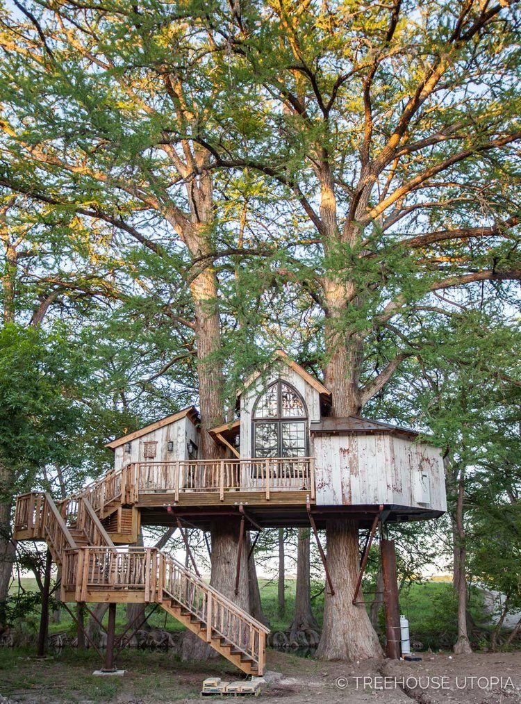 Pin On Awesome Treehouses