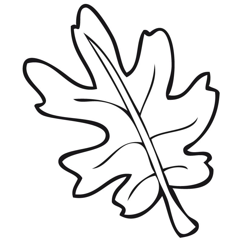 Hoja árbol Platanero Dibujalia Dibujos Para Colorear