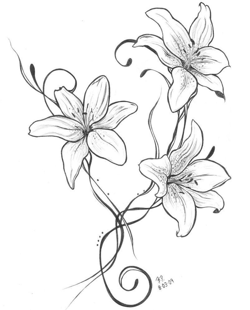 длинный цветок рисунок этих
