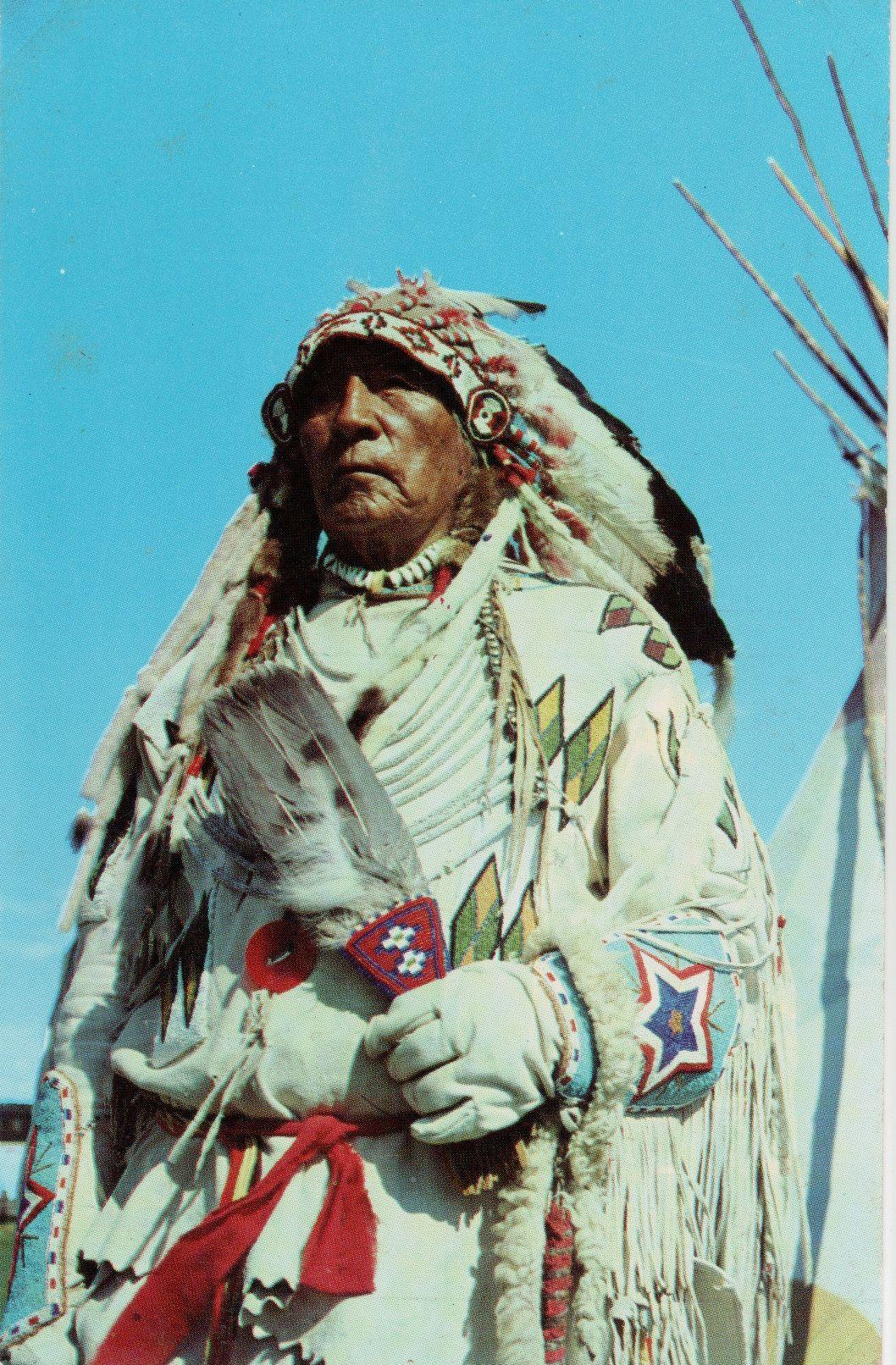 Chief Eagle Glacier National Park The Blackfeet Tribe
