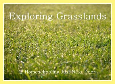 Pin on Grasslands / Prairie