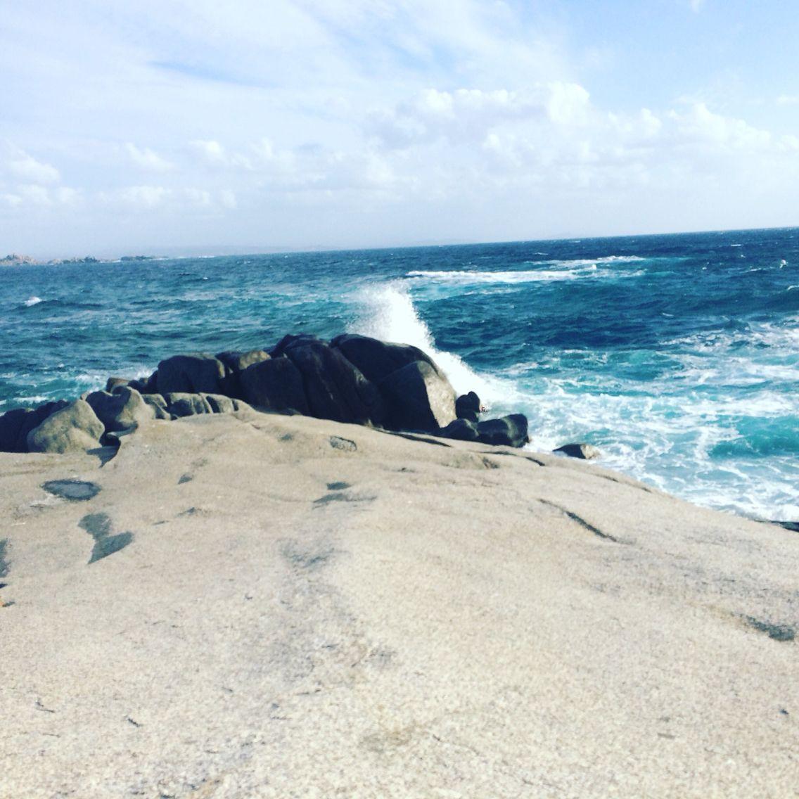 Île de cavalo en Corse