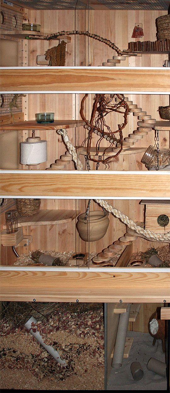 Nagerheim Terrarium Fur Rennmause Umgebautes Regal Bauanleitungen Einrichtung Kafig Und Zubehor Terrarium Katzenkafig Degu