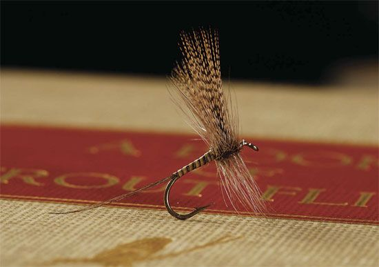 Slate Drake Variant $2 25 Tradition Dry Fly tied in the traditional