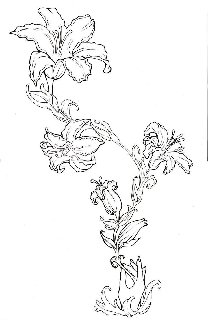 Beautiful outline lily flowers tattoo design outline pinterest beautiful outline lily flowers tattoo design izmirmasajfo