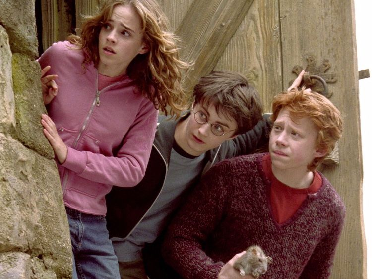 Emma Watson Daniel Radcliffe And Rupert Grint Who Carried 8 Films In The Harry Potter Franchise From Harry Potter An Potterhead Pop Culture Harry Potter Cast