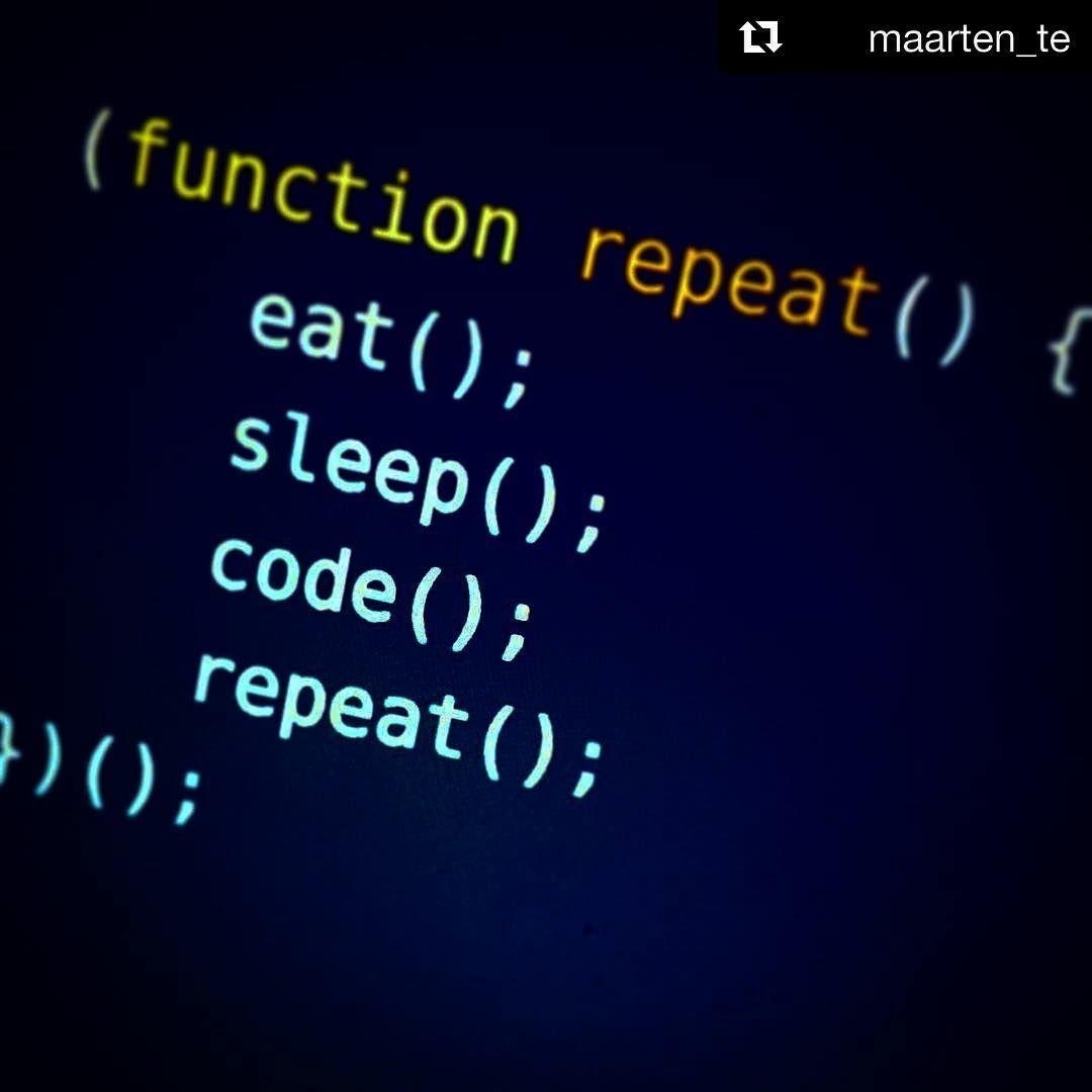 My Life Programming Humor Programmer Humor Coding Software
