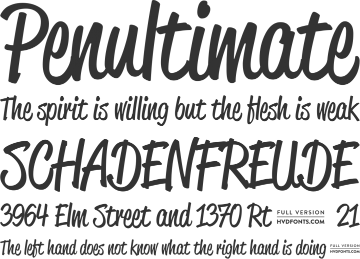 Font Squirrel 100 Free Fonts For Commercial Use Info Script