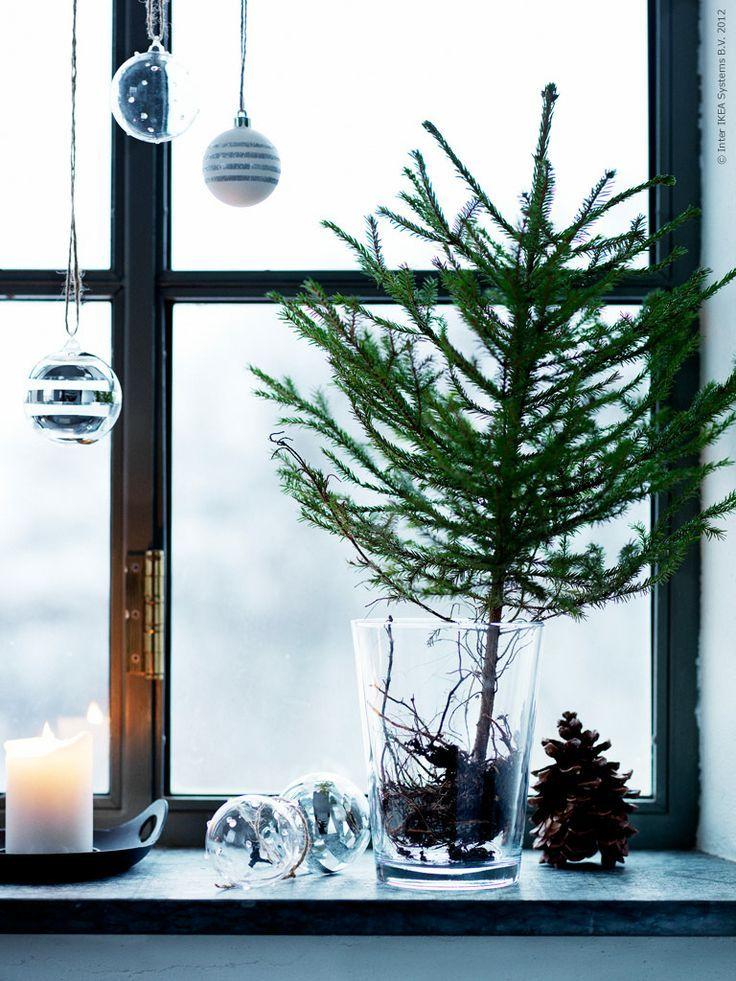 decorare con ramo di pino 29 idee fai da te decorare con ramo di pino oggi in questo post abbiamo raccolto per voi alcune idee per decorare casa con i