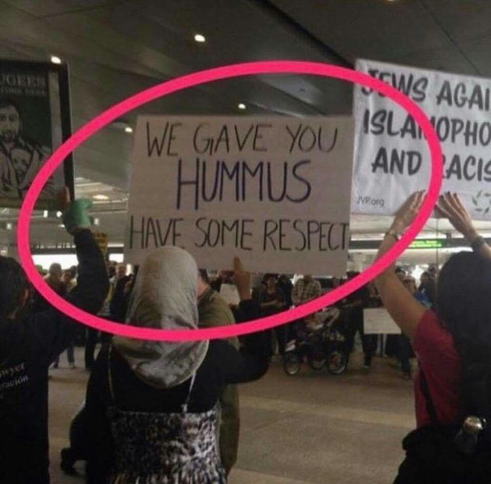 We Gave You Hummus Have Some Respect Hilarious Protest Sign From
