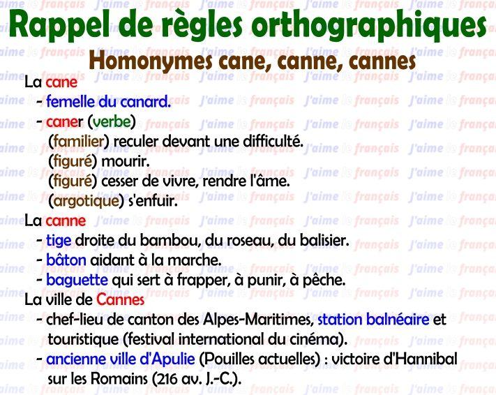 J'aime le français... Rappel de règles orthographiques