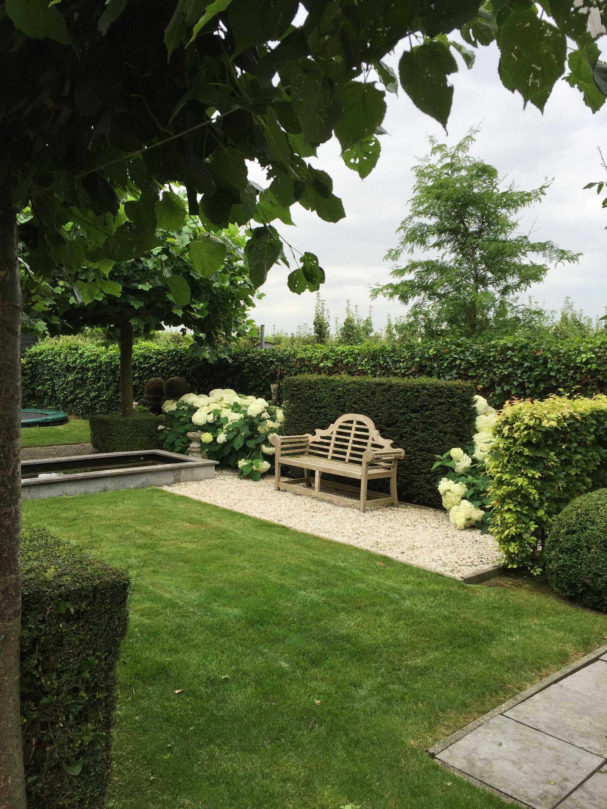 Nice backdrop for Lutyens bench. | Small garden design ...