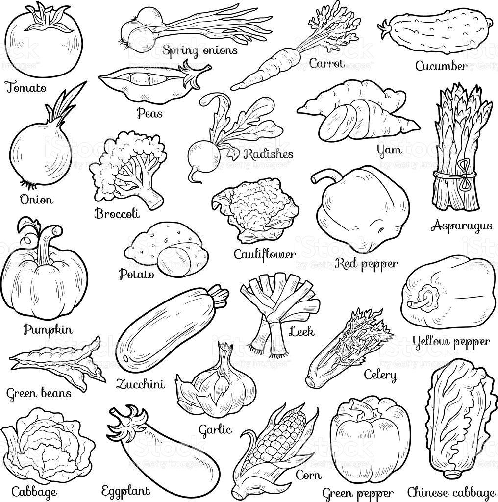 Vetores De Colorless Legumes Vetor Definido Com Adesivos De