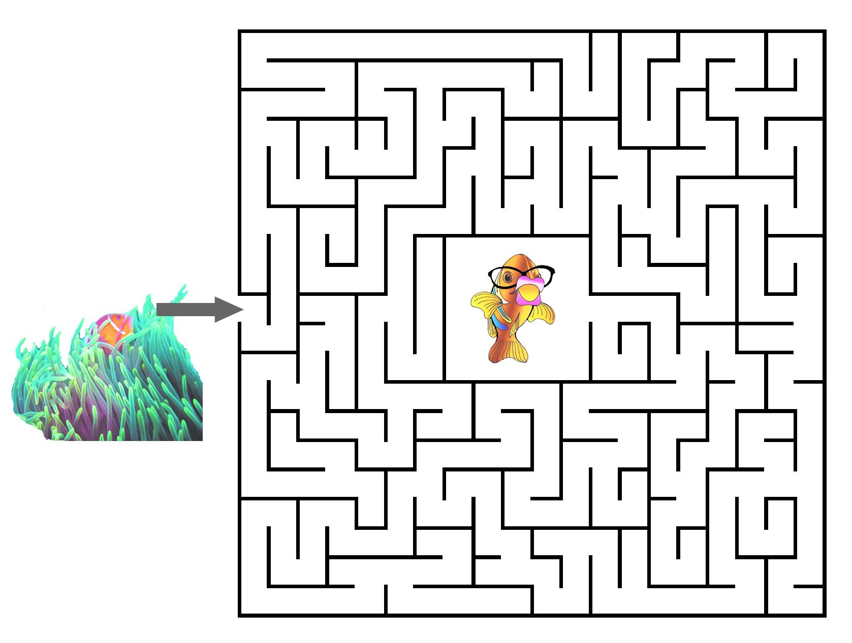 Hidden Picture Printable Maze Help Kika Find her way home