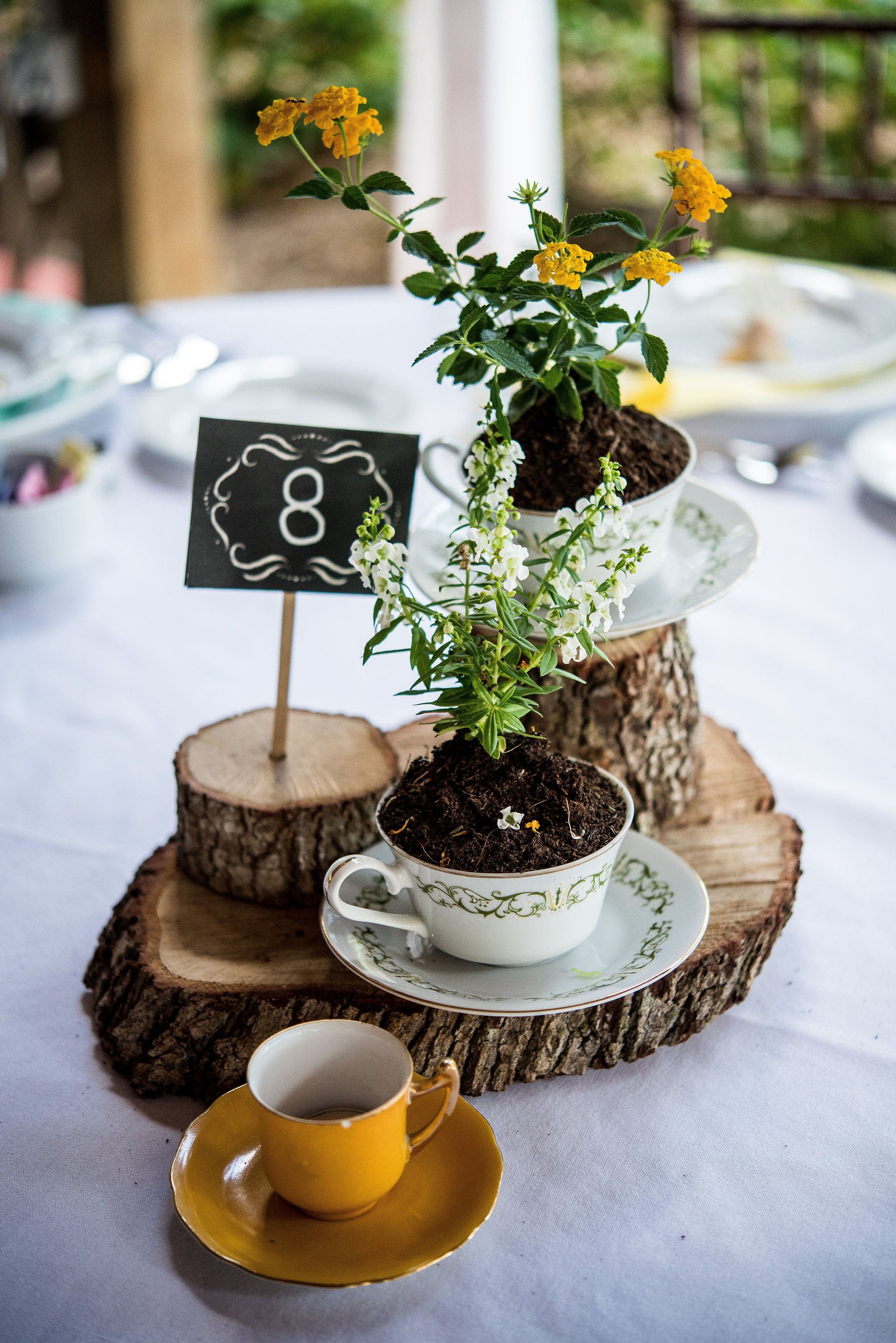 Rustic Wood And Teacup Centerpiece Fall Wedding Table Decor Tea Cup Centerpieces Table Decorations