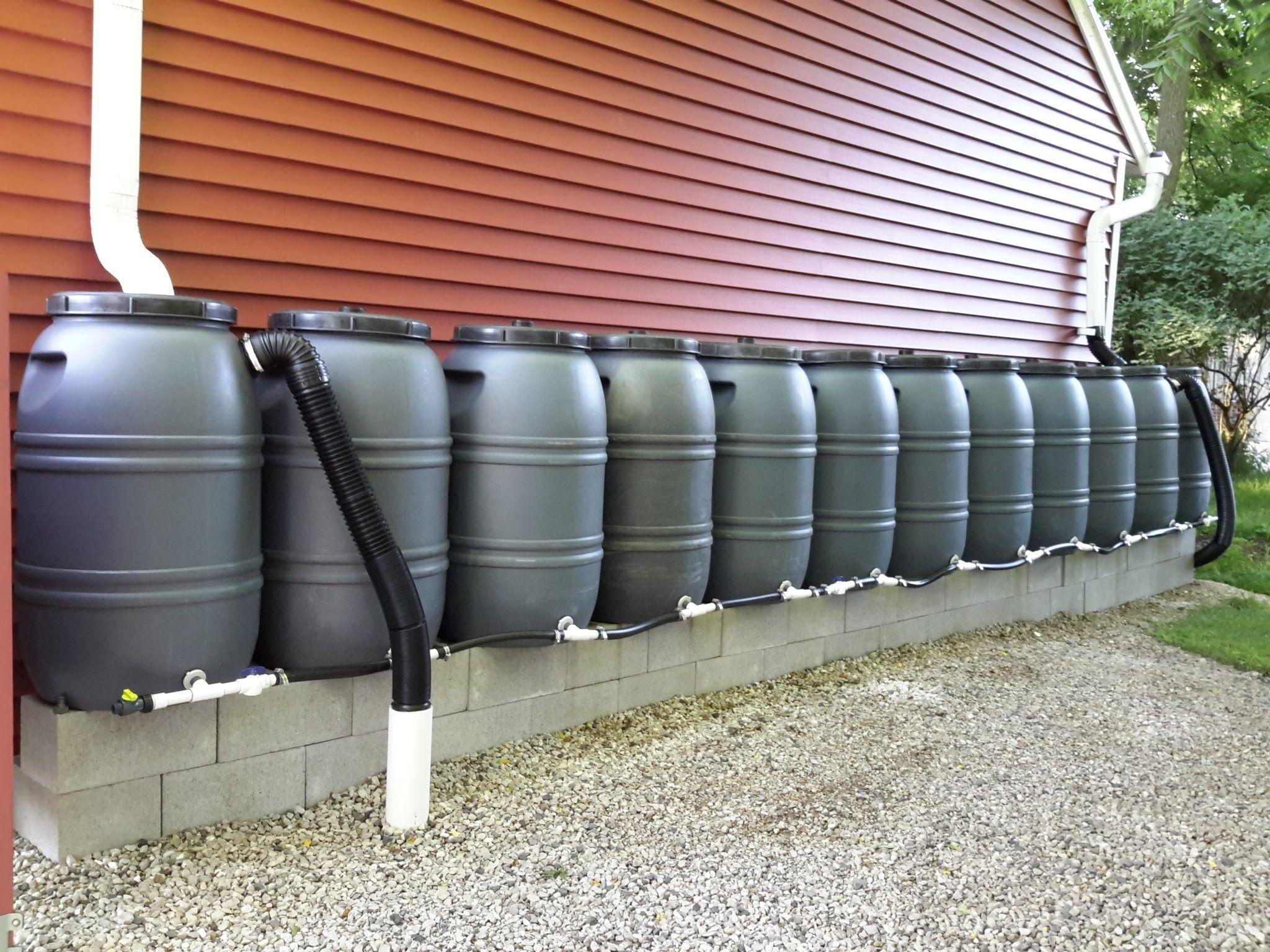 Critter Farm S Diy 660 Gallon Rain Barrel Manifold System Rain Water Collection System Rain Water Collection Rain Barrel