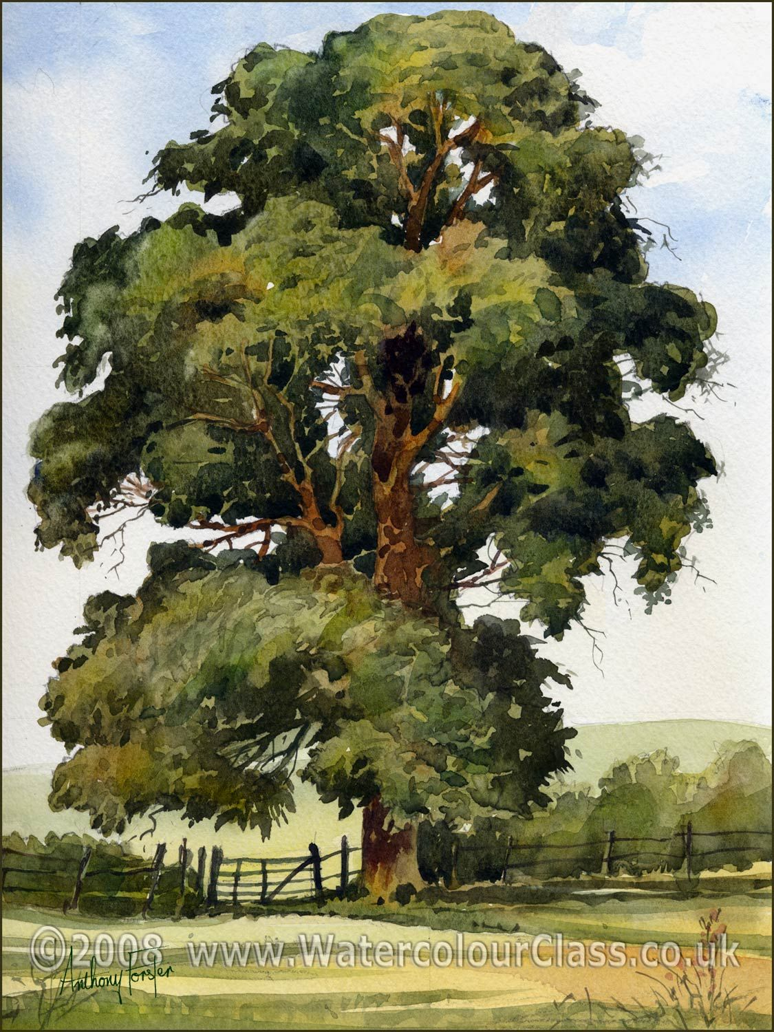 Tree Watercolor Paintings Tree Watercolor Painting Watercolor