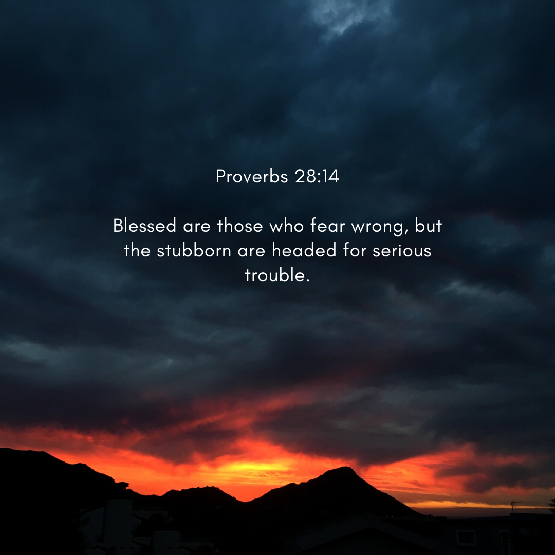 Proverbs 28 14 Be Wise Enough To Know When You Do Wrong Don T Let Your Stubborn Ways Be Your Undoing God Doesn T Chang In 2020 Proverbs 28 Proverbs Blessed Are Those